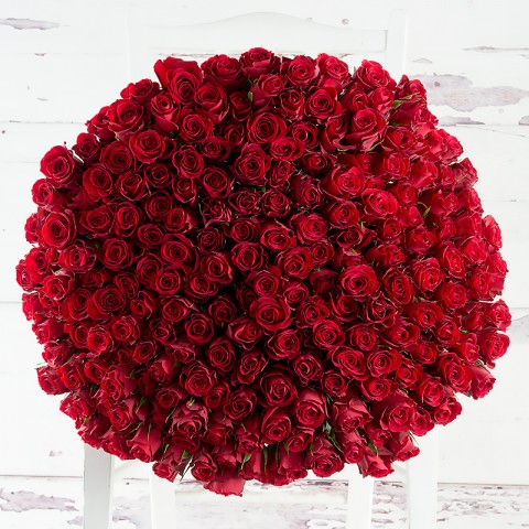 200 Luxury Red Roses