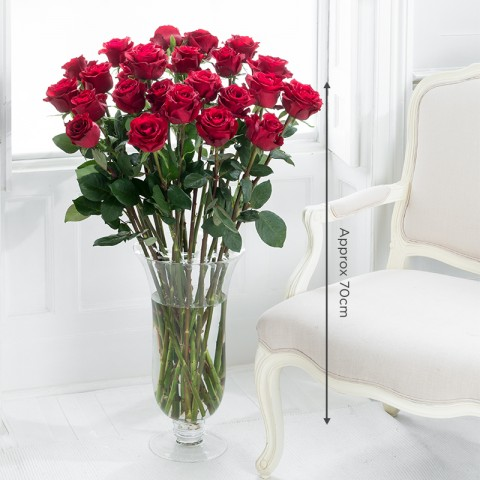 24 Duchess Red Roses