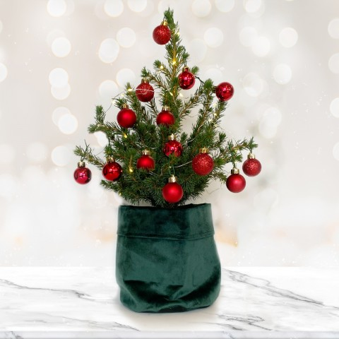 Medium Christmas tree with Red baubles