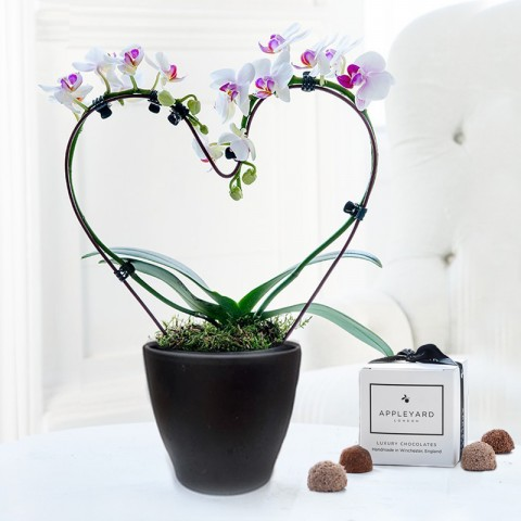 Pink Heart Shaped Orchid & 6 Mixed Truffles