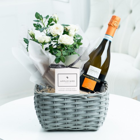 Luxury Prosecco Plant Hamper