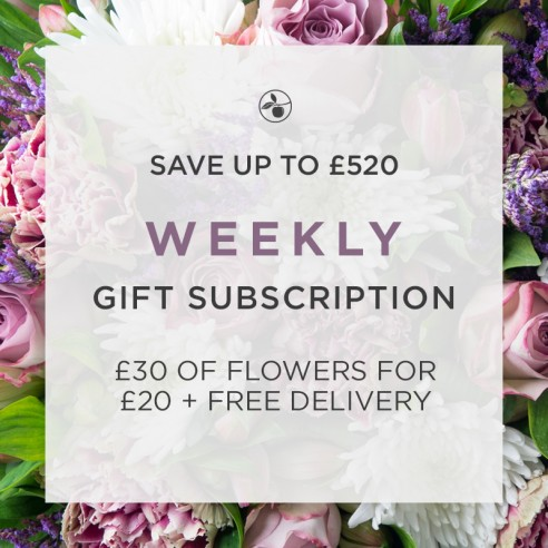 Weekly Gift Subscription
