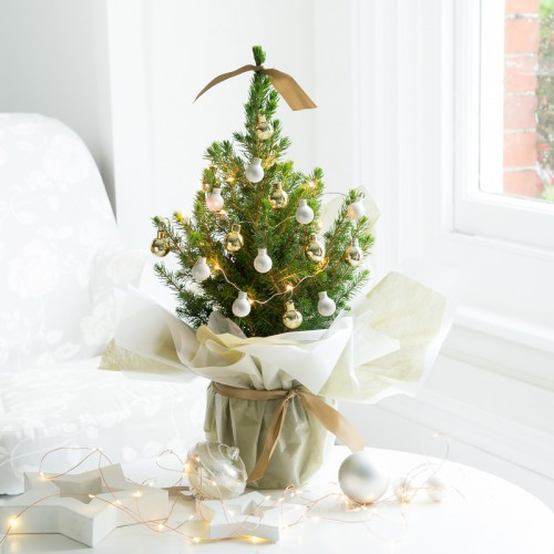 Gold Decorated Christmas Tree