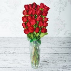 Duchess Red Roses