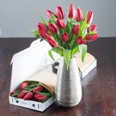 Letterbox Christmas Tulips