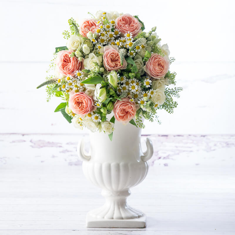 extra large 1000 - Peach Garden Rose